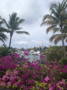 yachts at Sandy Lane Resort