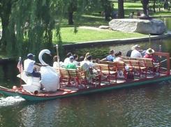 swan boat in Boston