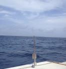 on a catamaran at sea