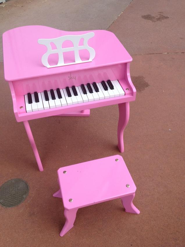 my pink world Img_6079