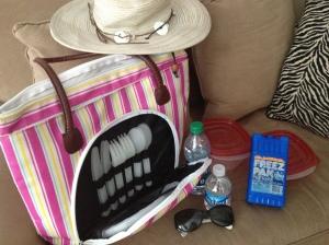 picnic bag, hat, sunglasses, tupperware