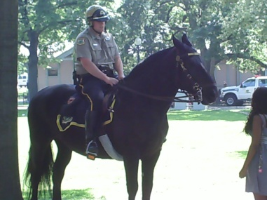 Police on horseback Boston Pubic Garden