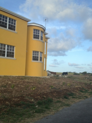McMansion Barbados style