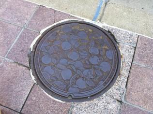 Minneapolis manhole cover art