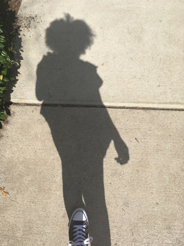 a shadow on pavement