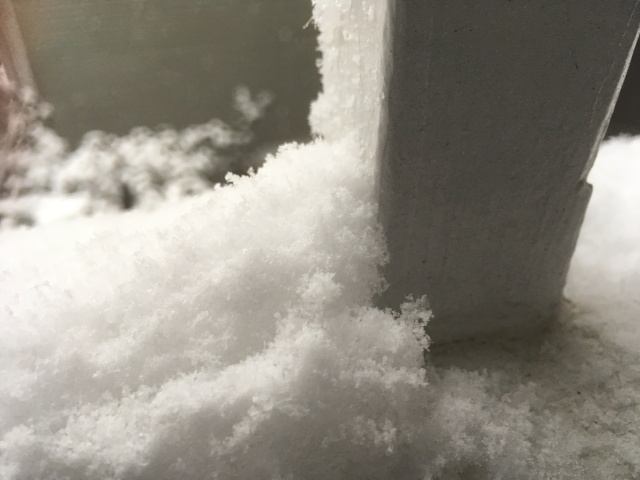 fresh snow on a rail